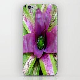 Purple Bromeliad iPhone Skin