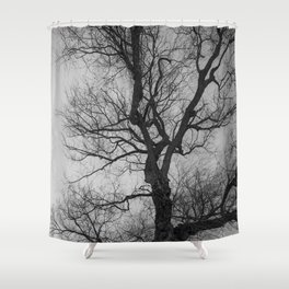Nature Photography Weeping Willow | Lungs of the Earth | Black and White Shower Curtain