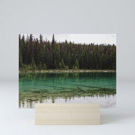 See-through Lake II Mini Art Print