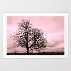 Rosy Sunset Art Print