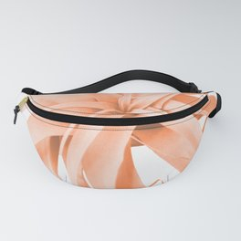 Coral Color Air Plant White Background #decor #society6 #buyart Fanny Pack