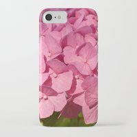 hydrangea iPhone & iPod Cases featuring Hydrangea by Susann Mielke