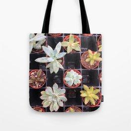 Succulent Squares Tote Bag