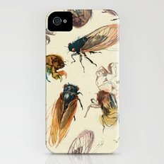 summer cicadas iPhone (4, 4s) Slim Case