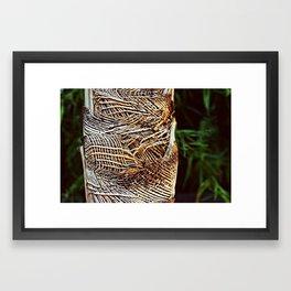 Burlap Tree Framed Art Print