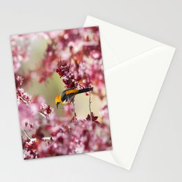 Oriole in Plum Tree Stationery Cards