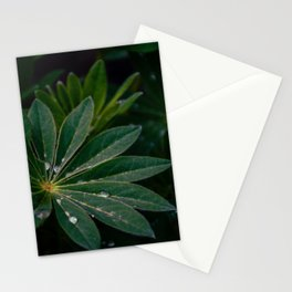 Plants in the rain Stationery Cards