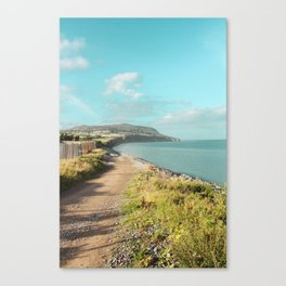 Anything but Grey Canvas Print