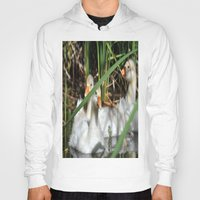 ducks Hoodies featuring ducks by  Agostino Lo Coco