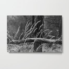 Flims III Metal Print
