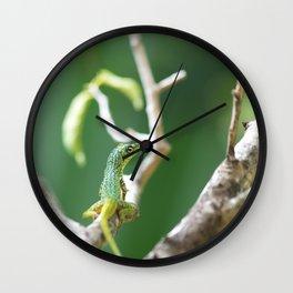 Caribbean Lizard Wall Clock