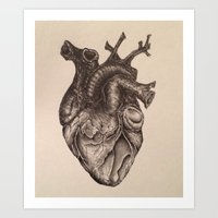 anatomical heart Art Prints featuring Anatomical Heart by Redmonks