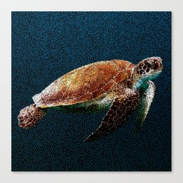 Lone Turtle at Sea Canvas Print