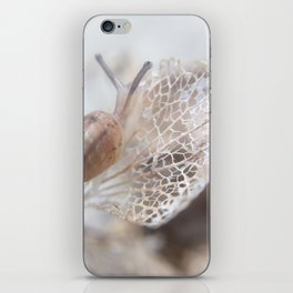 Snail's Pace #2 iPhone Skin