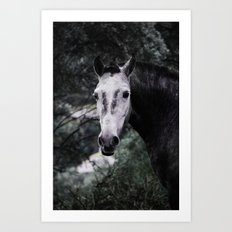 Free Horse Art Print