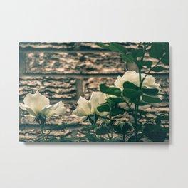 Moody Roses Metal Print