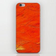 Glazed Terracotta iPhone & iPod Skin