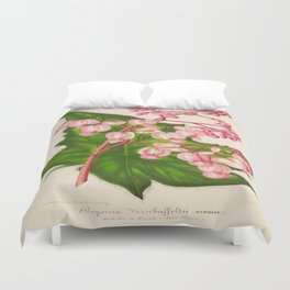 Begonia Verschaffeltii Vintage Botanical Floral Flower Plant Scientific Illustration Duvet Cover
