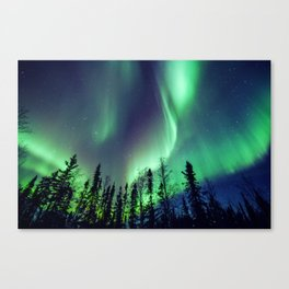 Northern Lights in Yellowknife Canvas Print