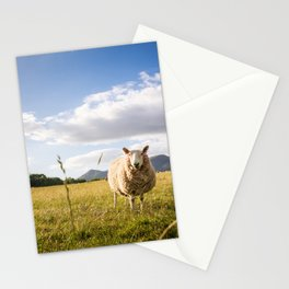 Sheep grazing Lake District, England Stationery Cards