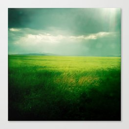 Green Fields Canvas Print