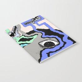Strange Vision Notebook