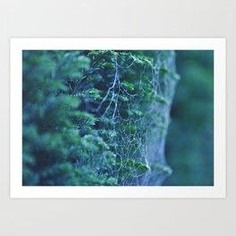 Cool Tone Macro Web - Nature Photography Art Print
