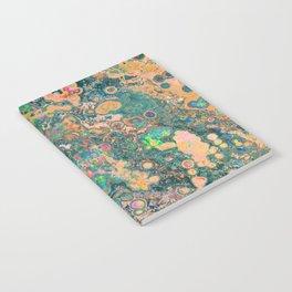Speck Notebook