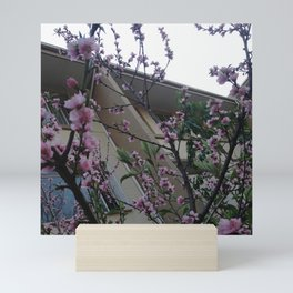 #320 More blossoms Mini Art Print