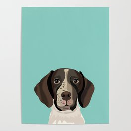 German Shorthair Pointer portrait minty dog portrait cute art gifts for dog breed lovers Poster