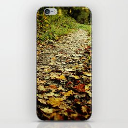 Feet Firmly on the Path iPhone Skin