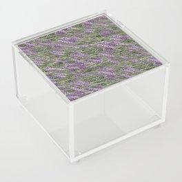 """LAVANDULA """"FRED BOUTIN"""" Acrylic Box"""