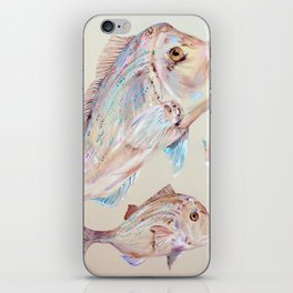 Pink Snapper Fish iPhone Skin