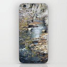A Creek on a Snowy Day in Boulder, Colorado II iPhone Skin