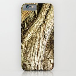 Majestic Gnarled Ficus Tree Trunk and Aerial Roots Texture iPhone Case