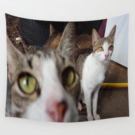 Back Yard Kitties  Wall Tapestry