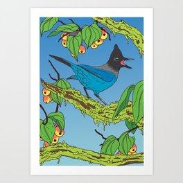 Steller's Jay & Crabapple Art Print
