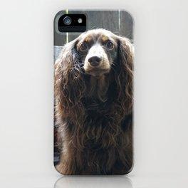 DACHSHUND ARTIST iPhone Case