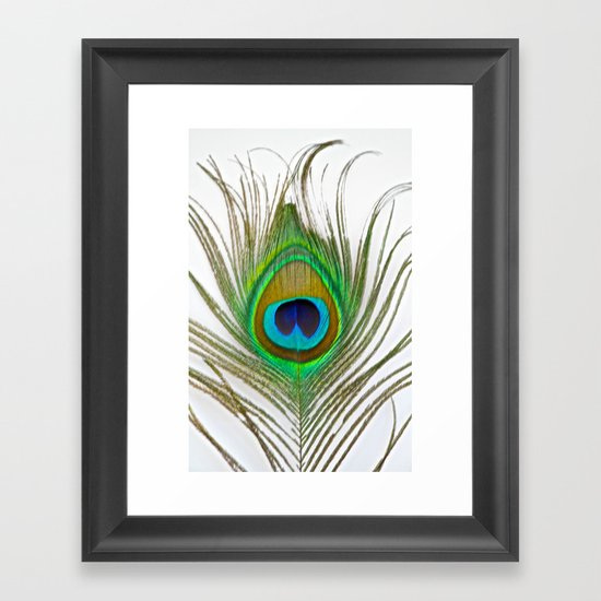 Peacock Feather on white Framed Art Print