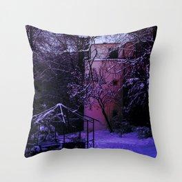 Concept Baden-Wurttemberg : Winter scenery castle park Laupheim Throw Pillow