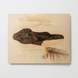 MUMMIFIED WOOD AND FEATHERS Metal Print