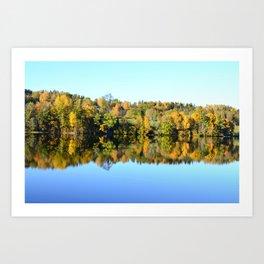 Mirroring nature Art Print