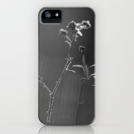 Black and white buds iPhone Case