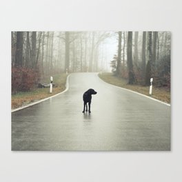 Closed Road Canvas Print