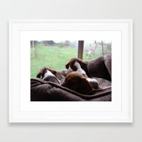 puppies Framed Art Prints featuring Dachshund Puppies by Canis Picta