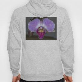 Purple Orchid Hoody
