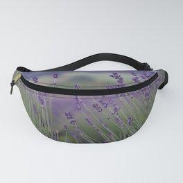 Lavender Fields Forever Fanny Pack
