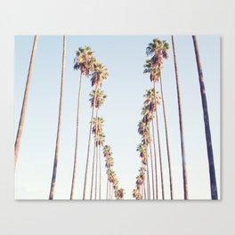 Palm tree stripes Canvas Print