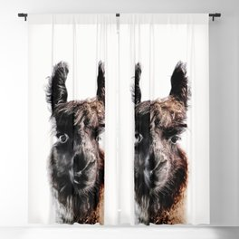 FLUFFY LAMA Blackout Curtain