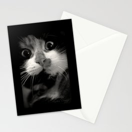 Le miroir Stationery Cards